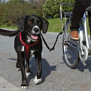 NEW-Dog-Lead-Deluxe-Bike-Distance-Keeper-For-Dogs