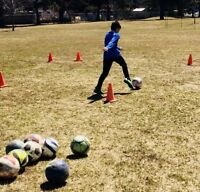 OneonOne Outdoor Soccer Training with an Ex Professional Player