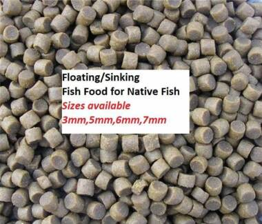 Fish Food - Floating/Sinking