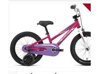Kids specialized bike