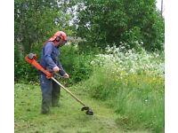 Aylesbury Gardener
