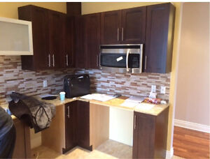 Gorgeous spacious 4 1/2 condo for rent in le plateau  !!