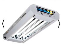 T5 as new fluorescent tubes grow light hydroponics