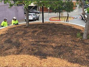 Landscape gardening work!!!! Blacktown Blacktown Area Preview