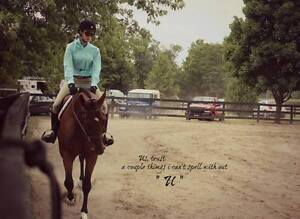 Looking for a second rider for my mare Kitchener / Waterloo Kitchener Area image 3