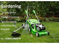 Gardening services : cutting grass , hedge trimming , garden waste collection and disposal .
