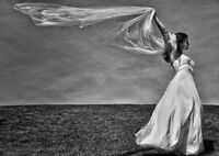 Videography and photography and planning services