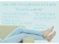 Experienced local reliable domestic cleaner/home help available