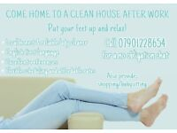 RELIABLE PRIVATE DOMESTIC CLEANER
