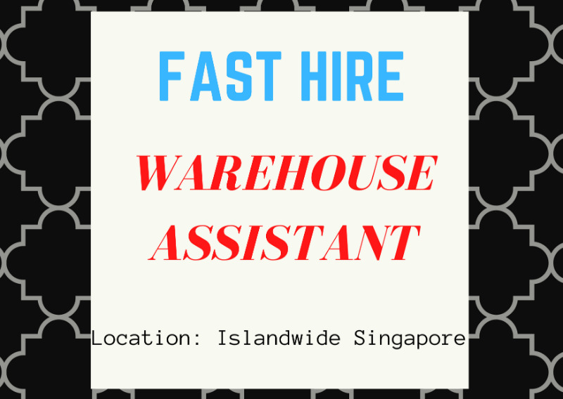  WAREHOUSE FORKLIFTING ASSISTANT 