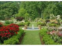 Gardener and handyman services