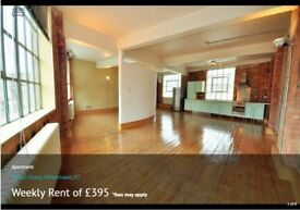 Wonderful Warehouse Conversion Flat to rent (dog friendly)