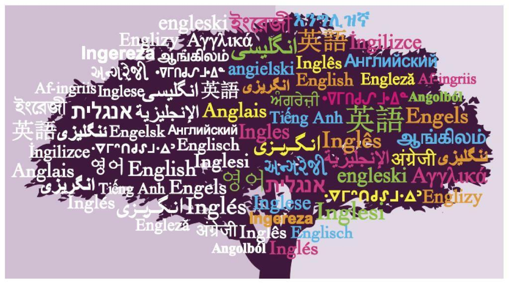 Private English language lessons / class / IELTS / academic service from experienced teacher / tutor