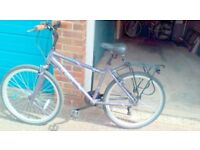 Ladies Apollo Theia 17 bike excellent condition, puncture proof tyres. Need cash for Charity Trek .