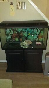 60 gallon tank, stand & accessories