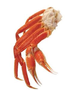 Fresh cleaned and cooked snow crab