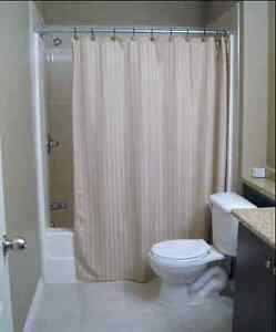 1 Bedroom in the basement (female only), South side Edmonton Edmonton Area image 5