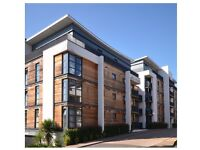 URGENT Brand new 2 bed flat-East Putney NO AGENCY FEE