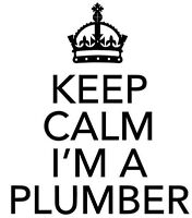 Excellent plumber at an excellent rate