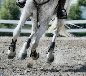 Quality Rubber Horse Arena Footing - Crumb Rubber