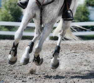 Quality Rubber Horse Arena Footing
