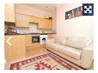 A lovely double bedroom flat on Mutley
