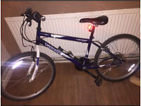 Dunlop Mountain Bike 22 inches very good condition