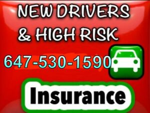 High Risk & New Driver