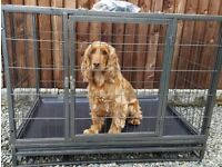 Dog puppy cage, house, kennel