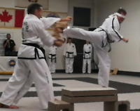 TAEKWON-DO PRIVATE AND SEMI-PRIVATE LESSONS