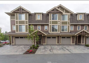 4-Yr NEW BEAUTIFUL Townhome, Available Oct. 1st