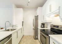 Downtown Great New Furnished Luxury Condo (inclu. everything)
