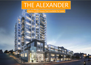 Introducing The Alexander!