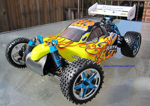 New RC Brushless Electric Buggy/Car , 4WD, Lipo , 1/10 Scale