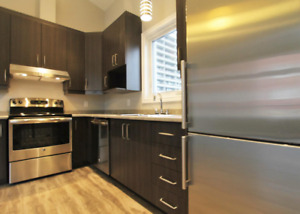 BRAND NEW 1 bedroom in Lowertown! Move in July 16 or August 1st