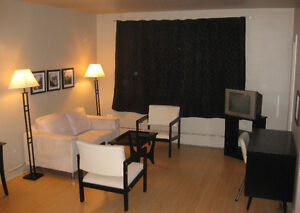 Fully Furnished Downtown Bachelor Rent Reduction with Lease
