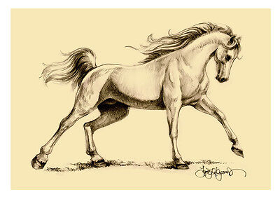 Horse Pony Prints and More