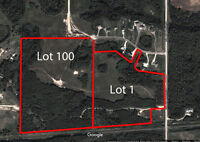 38.77 Acre court ordered land sale in Parkland County