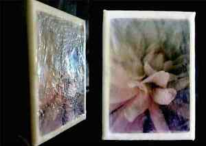 Custom Encaustic Photography, PhotoEncaustic, Custom Photography Windsor Region Ontario image 1