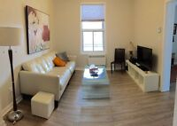 Beautiful Fully Furnished 2 Bedrooms Close to Metro De L'Eglise