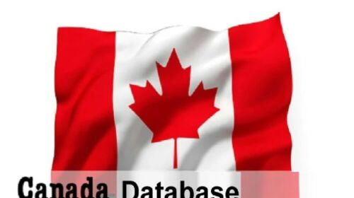 1 Million 2021 Latest Canada Business Database Sales Leads Email list Marketing