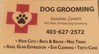 DOG GROOMING by Suzanne AHT