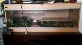 Snakes plus set up