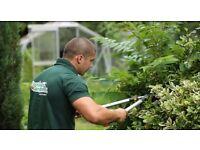 CROYDON gardeners-Maintenance,CLEARANCE-HOUSE,GARAGE,GARDEN,Rubbish, Builders Waste, Good prices
