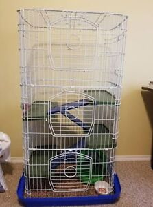 Ferret (small animals) cage for sale