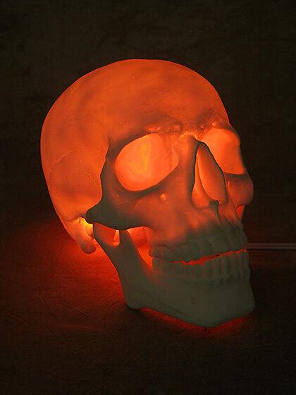 Lighted Two Piece Skull Display, Halloween Prop, Human Skulls NEW