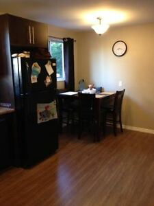 Fully Renovated 2 Bedroom Apt- Available March 1st- Open House London Ontario image 2