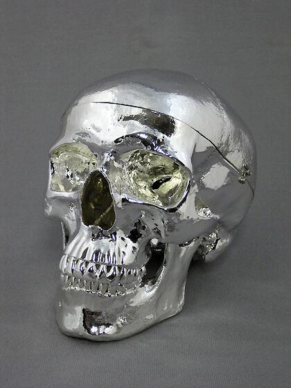 Chromed Harvey Life-Size 3 Piece Skull, Halloween Skull, Silver Skull,NEW