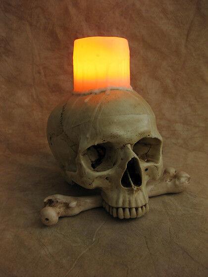 Lighted Skull Display w/ Wax Candle, Halloween Prop, Human Skulls NEW