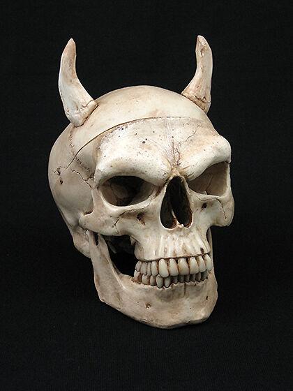 "Evil Harvey Skull w/ 2"" Horns, Halloween Prop, Human Skulls/Skeleton, NEW"